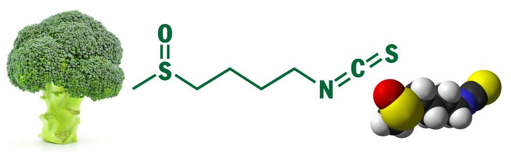 broccoli-chemistry